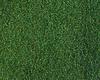 Carpets - Palette Pro sd fm imp 400 - FLE-PALPROIMP - 305720 Neptune Green