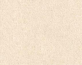 Carpets - Pure Wool 2600 btfa+ 400 - OBJC-PUREWL - 2601 Eggshell