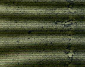 Carpets - Art Weave TEXtiles Broad Lines 100 100x100 cm - FLE-ARTWVBL100 - T800009150
