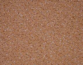 Carpets - Pacific tb 400 - GIR-PACIFIC - 231