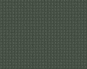 Carpets - Squadra 1000 ab 400 - OBJC-SQUADRA - 1001 Tymian