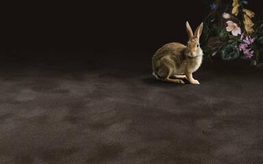 Koberce - Pure Wool 2600 btfa+ 400 - OBJC-PUREWL - 2601 Eggshell