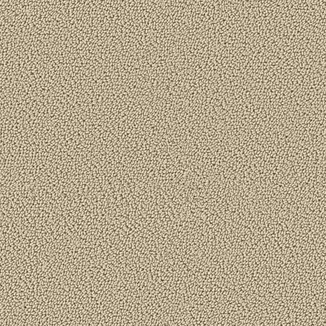 Koberce - Accor 1000 ab 400 - OBJC-ACCOR - 1003 Düne