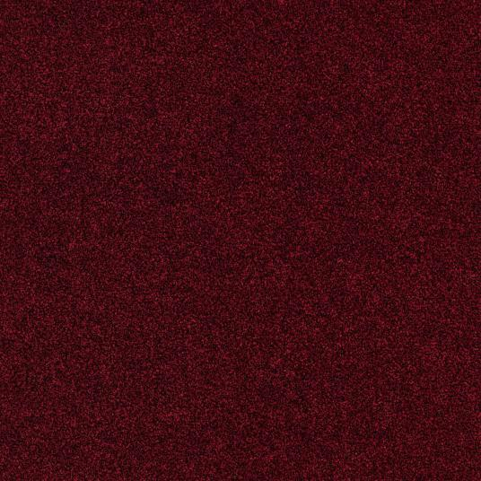 Vinyl - Expona Simplay Cleaning Mat 9 mm 178x1219 mm - OBF-SIMPLAYCLM - 2596 Ruby Zone