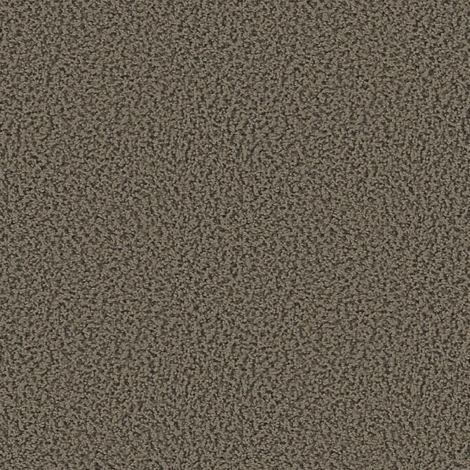 Koberce - Smoozy 1600 btfac 400 - OBJC-SMOOZYAC - 1601 Greige