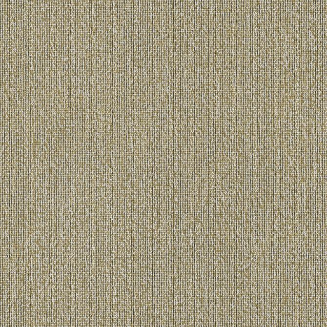 Carpets - Craze x Chase ab 400  - OBJC-CRAZECHASE - 710